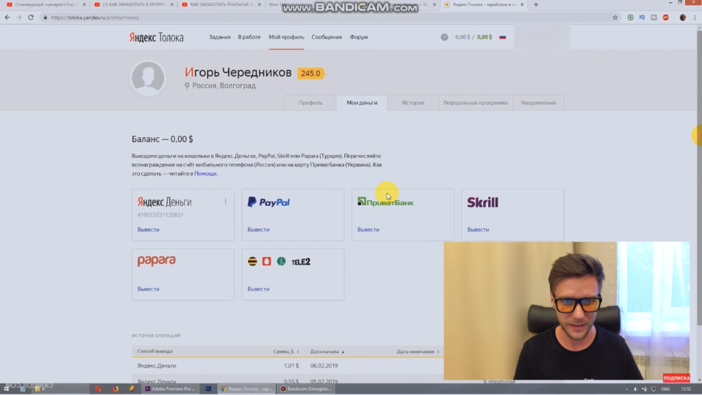 Работа в Яндекс Толока РАЗОБЛАЧЕНИЕ (12)