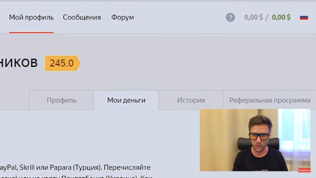 Работа в Яндекс Толока РАЗОБЛАЧЕНИЕ (13)